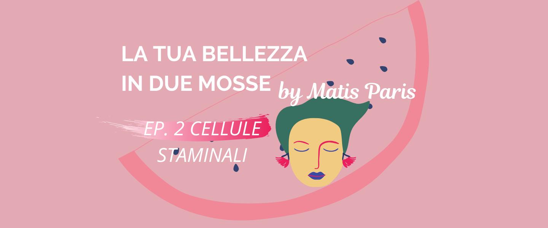 Read more about the article La tua bellezza in due mosse: cellule staminali